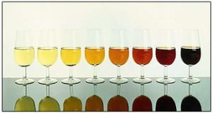 Tipos de vinos 2