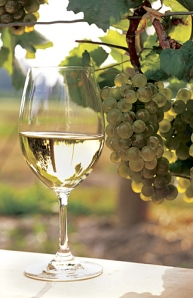 white_wine_and_glass