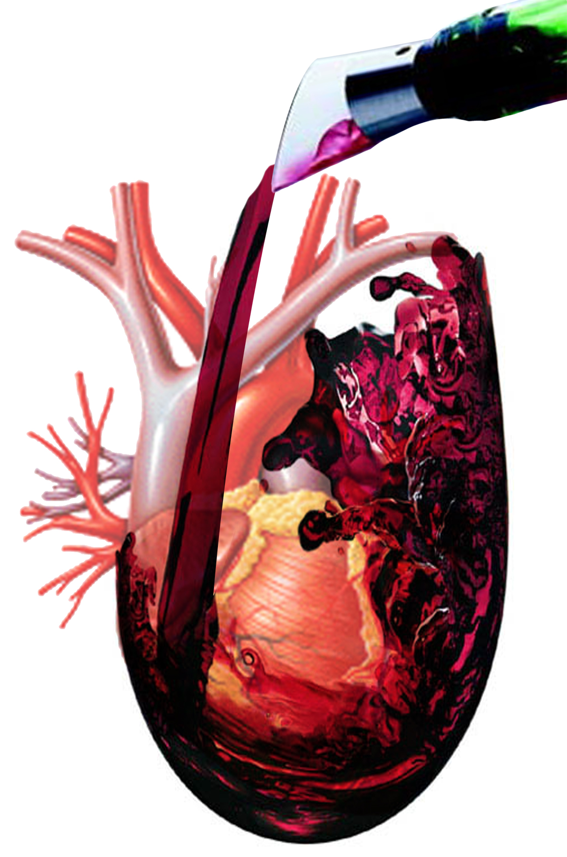 Vino tinto – ¿Corazóncontento?