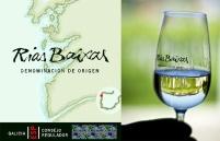 vinos-albariños-sin-palabras